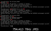 BSD: Getting the WM loaded-freebsd-no-awesome-cinnamon-openbox2jpg