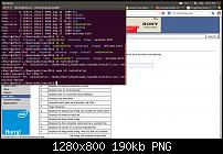 Permission denied for bash - UNIX and Linux Forums